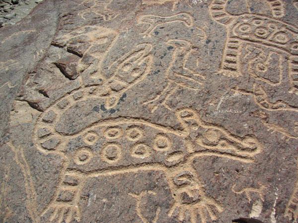 Toro Muerto Petroglyphs
